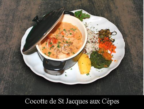 cocotte_st_jacques